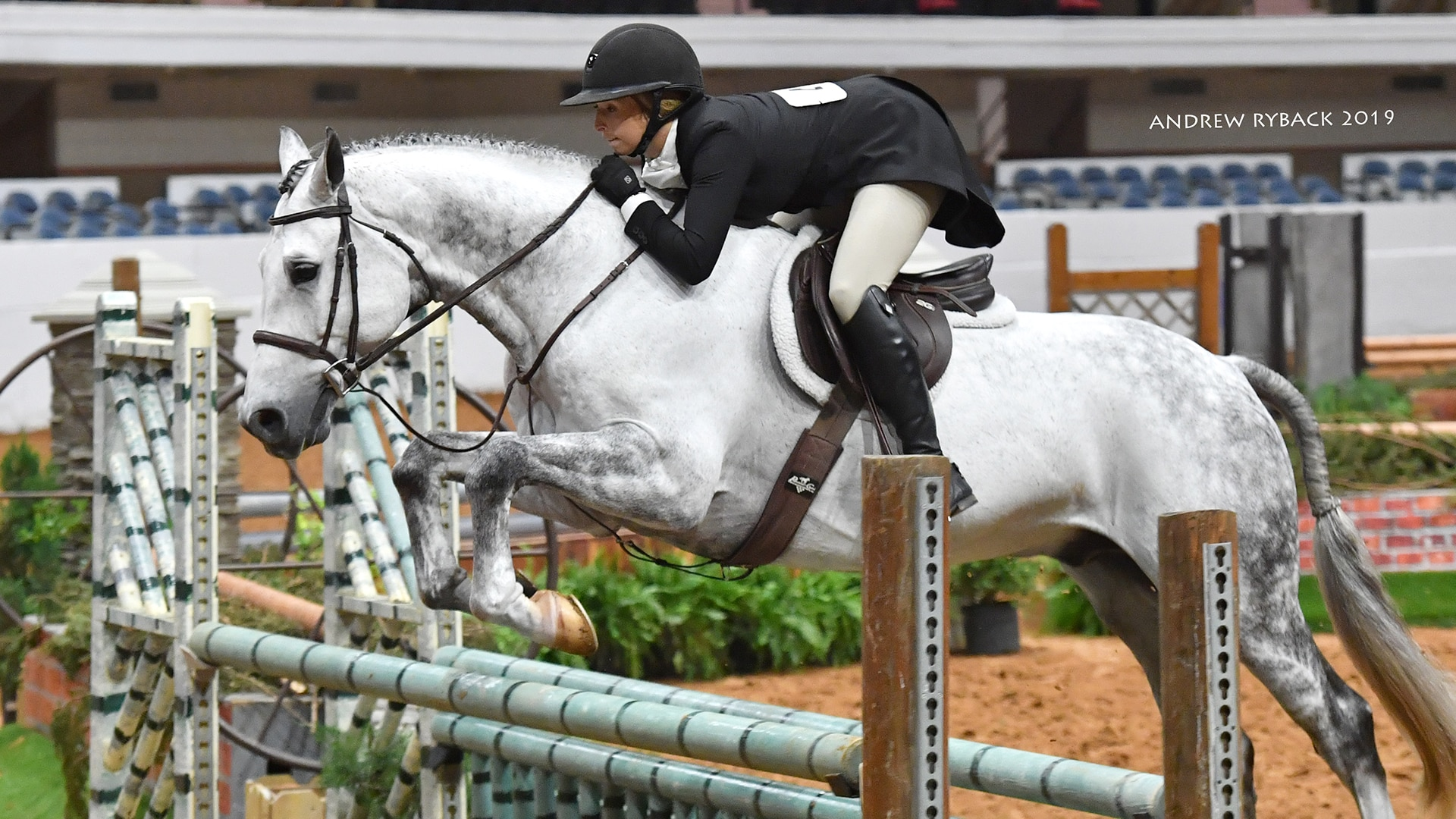 Show Jumping Classic 2021, Ft. Worth, Texas