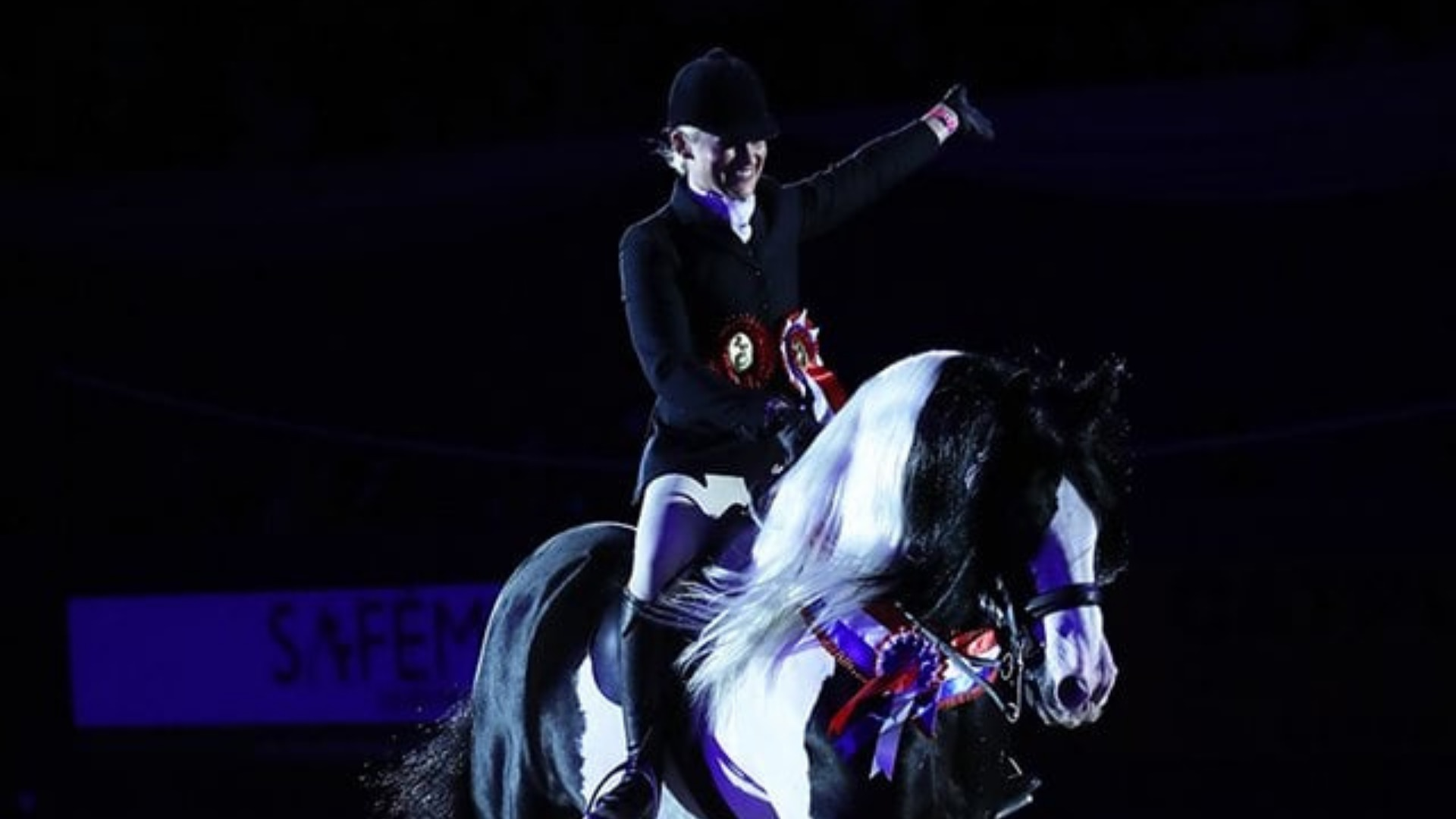 Coloured Hourse & Pony Society, Arena UK
