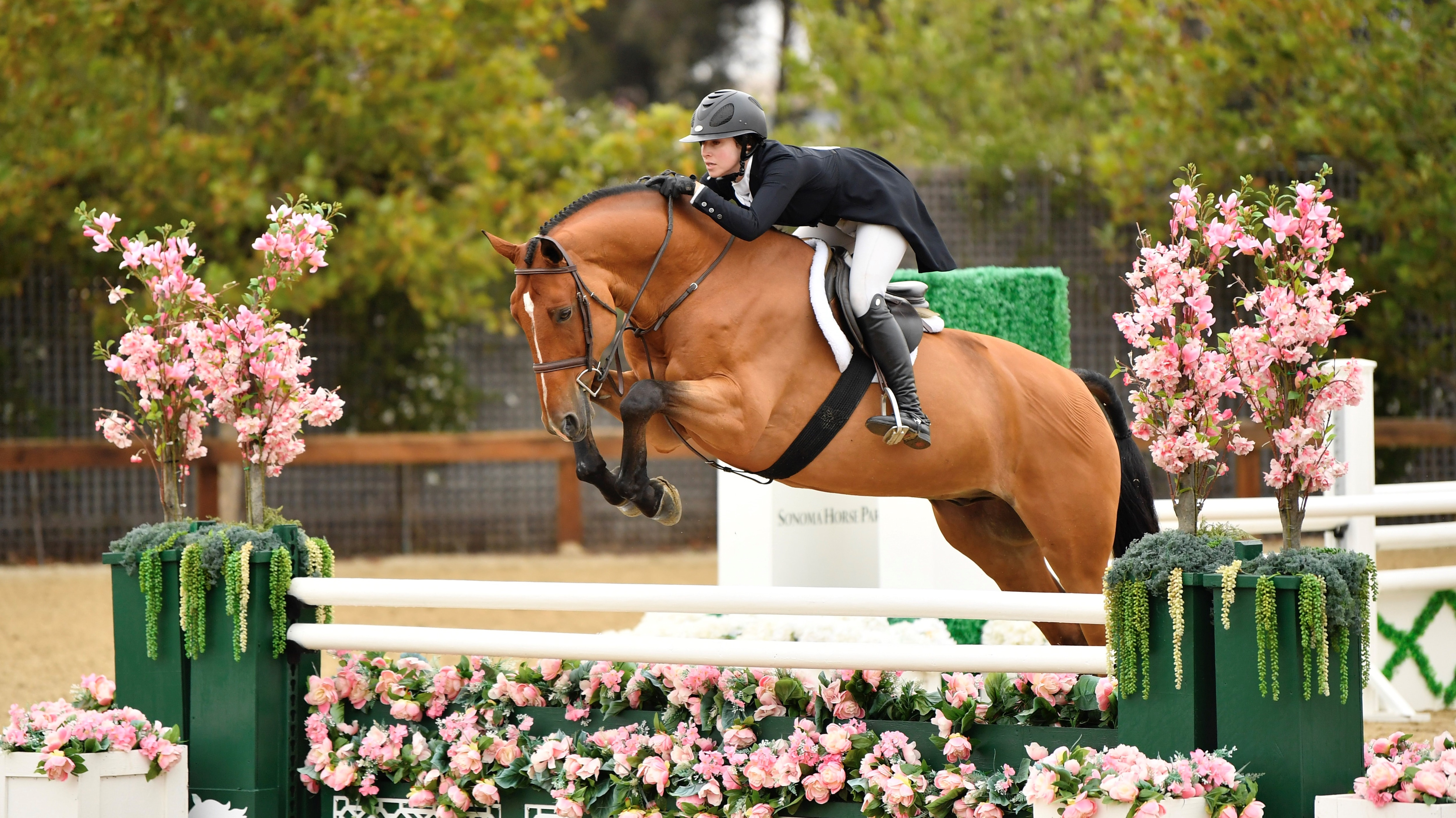 Sonoma Horse Park, MGT July Classic