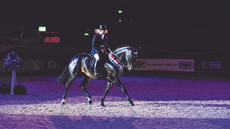 BSHA Hunter & National Championships, Arena UK