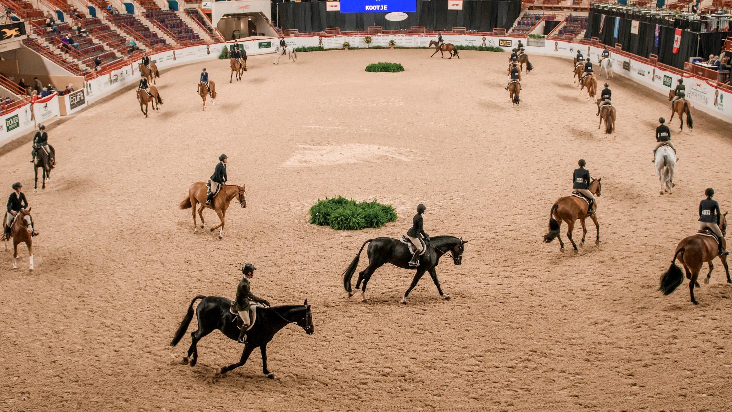 Pennsylvania National Horse Show: Harrisburg Coliseum