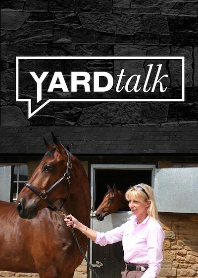Yard Talk Box Set - 28 episodes