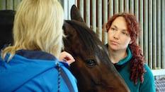 Annemarie: Listening to Horses (S3E1)