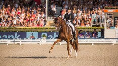 FEI European Championships 2019 Dressage Grand Prix Individual Competition