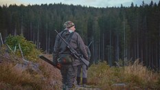 Kammans Trail: Red Stag Hunting in the Romanian Mountains