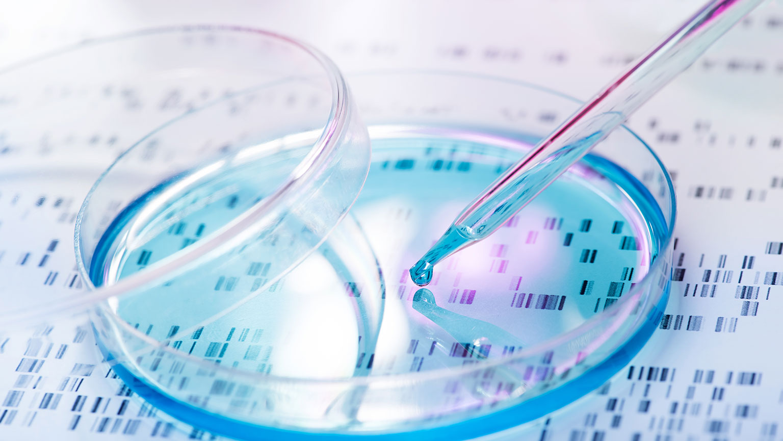 DNA in Identification—Forensics