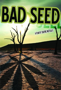 Image of Bad Seed: A Tale of Mischief, Magic and Medical Marijuana