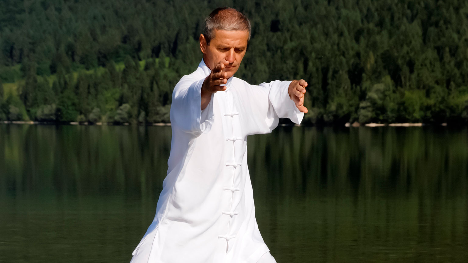 Reading the Tai Chi Classics