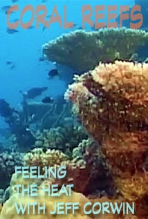 Image of Season 1 Episode 2 Coral Reefs