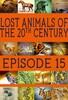 Lost Animals Part 15