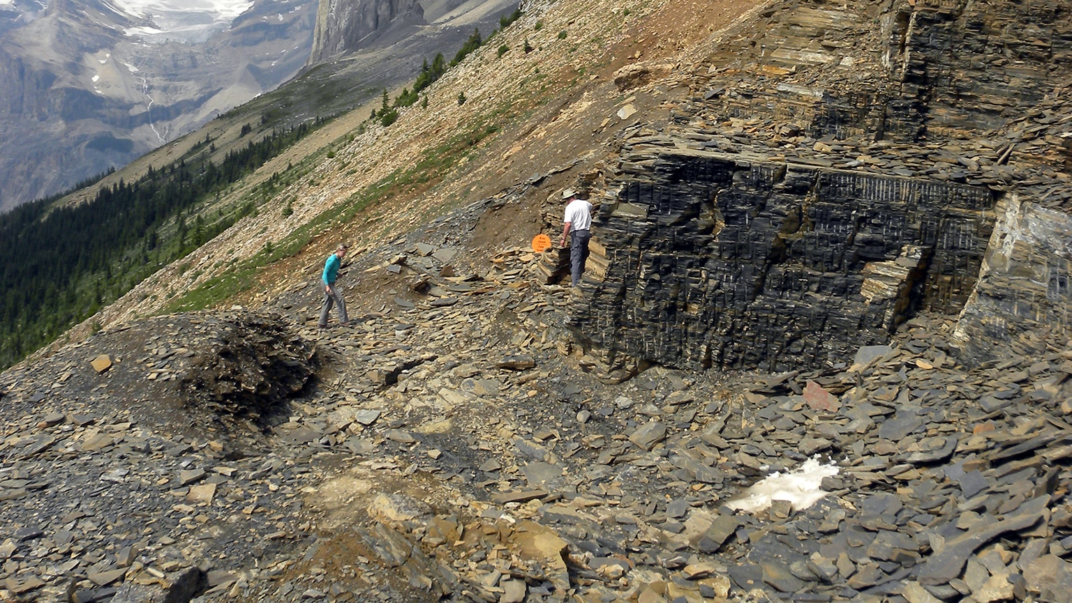 Window to a Lost World—The Burgess Shale
