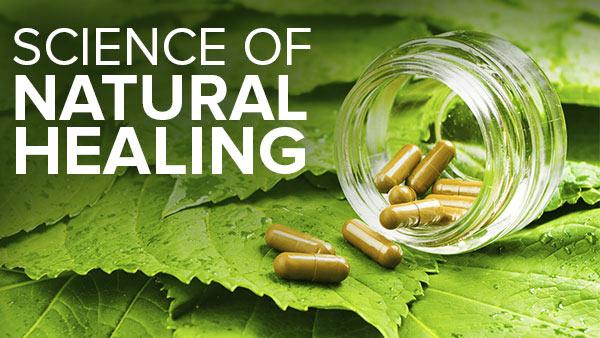 Image result for natural healing