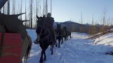 BC Late Season Backcountry Moose Part 2