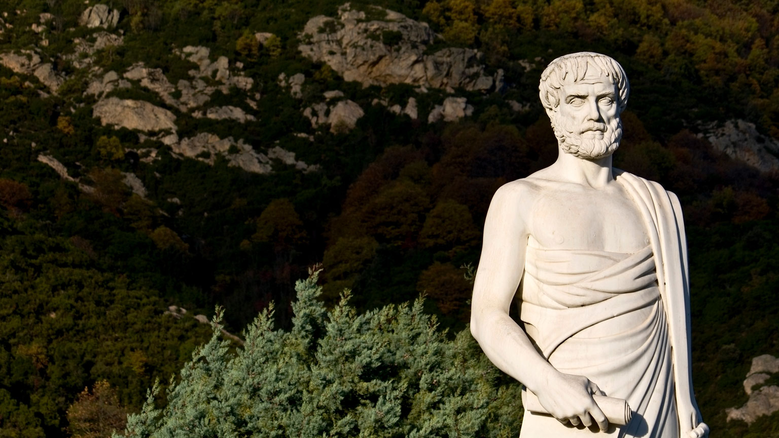 Learning and Memory: Associationism—Aristotle to Ebbinghaus