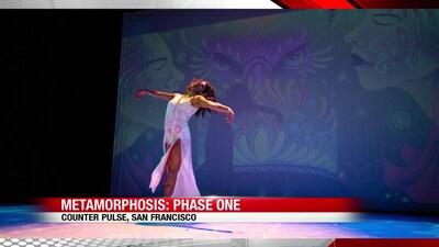 Metamorphosis: Phase One