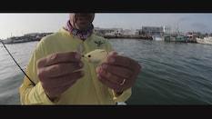 Yucatan Anglers Episode 3