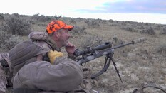 Wyoming Muleys and Antelope Part 2