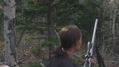 Elk Hunting the Twilight Zone