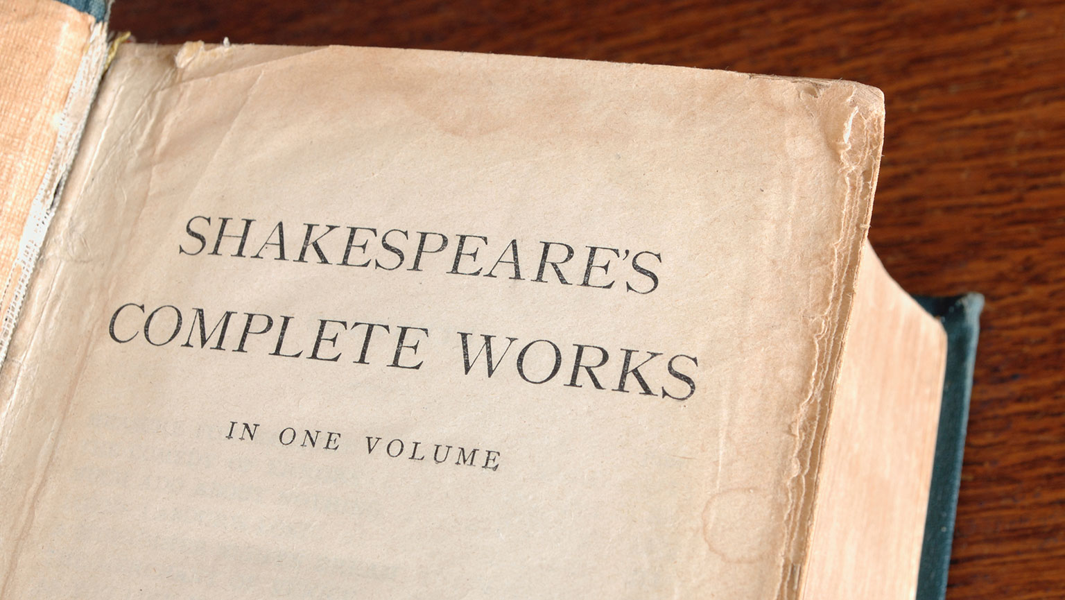 The Nature of Shakespeare's Plays